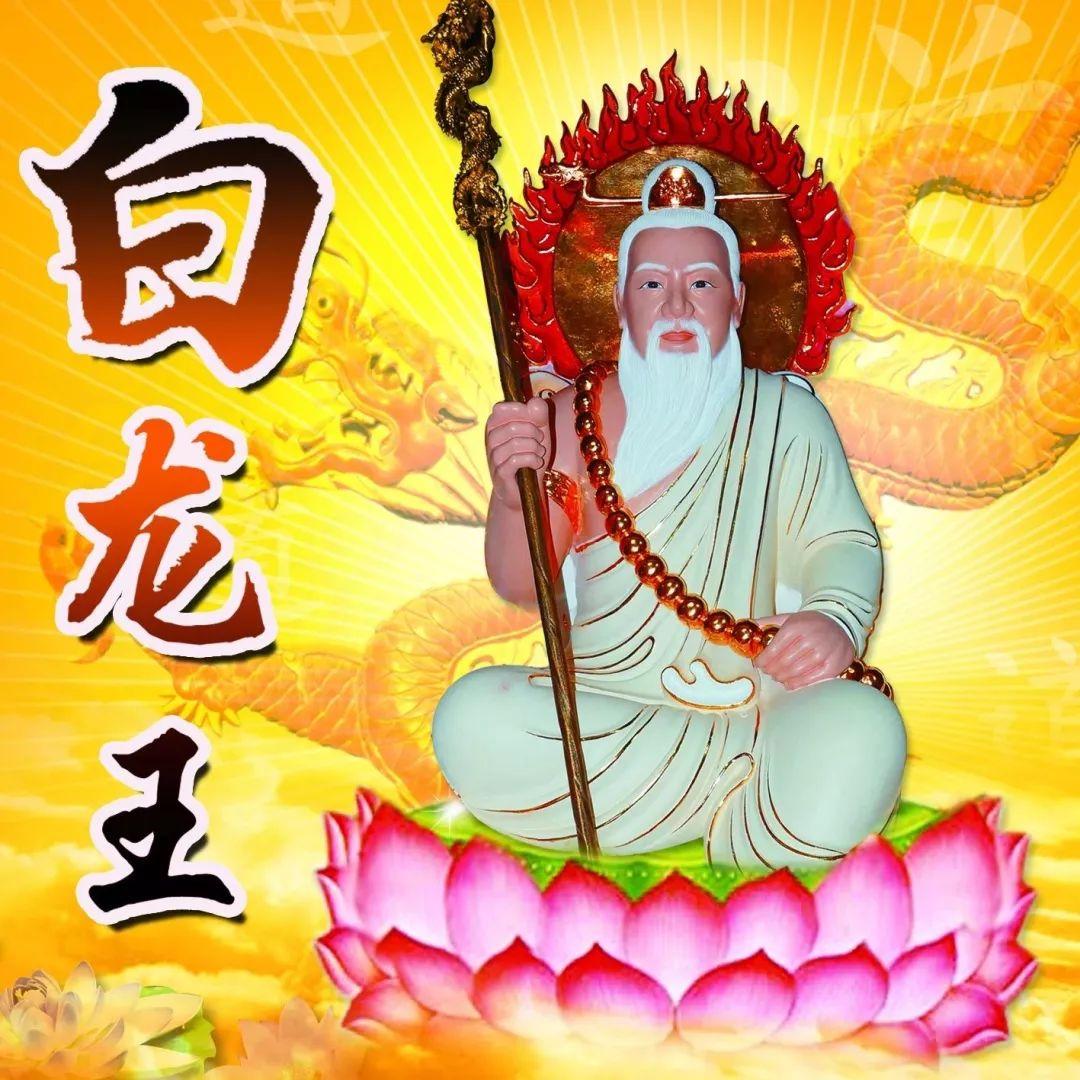 万灵符咒驱邪消灾——海外传承正一天师符箓